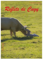 Reflets de Cugy 185